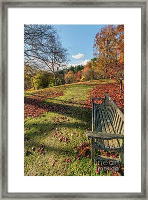 Autumn Leaves Framed Print by Adrian Evans