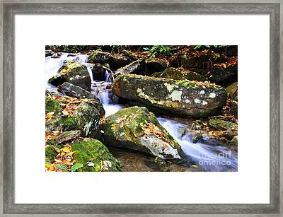 Autumn Mountain Stream Framed Print by Thomas R Fletcher