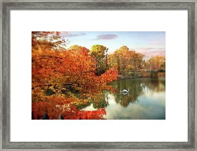 Autumn Splendor  Framed Print by Jessica Jenney