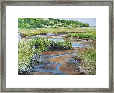 Lowley Marsh Framed Print by Karol Wyckoff