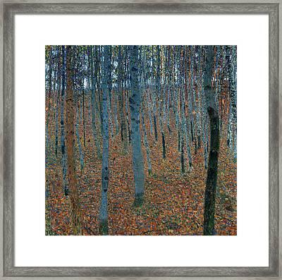 Beech Grove Framed Print