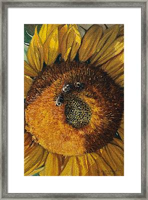 3 Bees Framed Print by Peter Muzyka