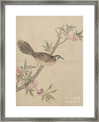 Birds Of Japan In The 19th Century Framed Print