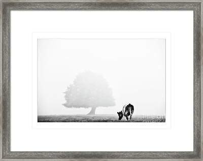 Black And White Nature Landscape Photography Art Work Framed Print by Marco Hietberg