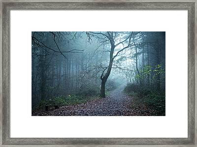 Blue Dream Framed Print by Svetlana Sewell