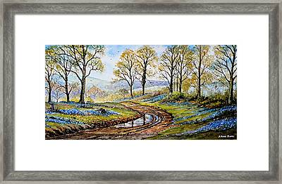 Bluebells In The New Forest Framed Print