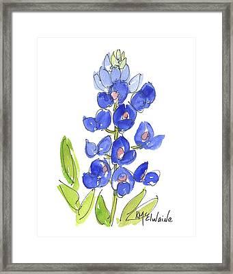 Bluebonnet Framed Print by Kathleen McElwaine