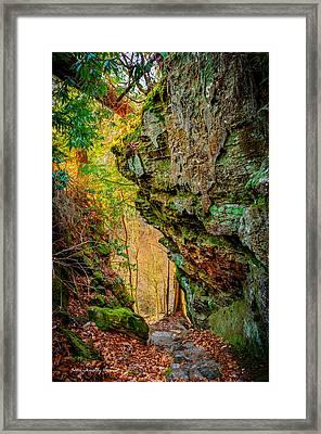 3 Bridges Trail #1 Framed Print