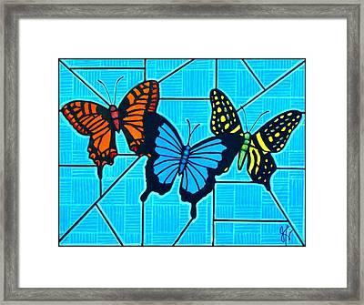 3  Butterflies On Blue Framed Print by Jim Harris