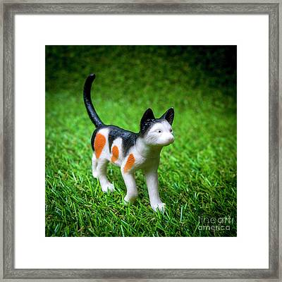 Cat Figurine Framed Print by Bernard Jaubert