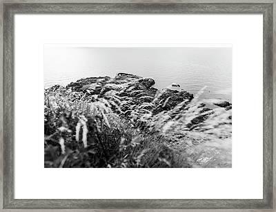 Cliffs At Kullaberg Framed Print