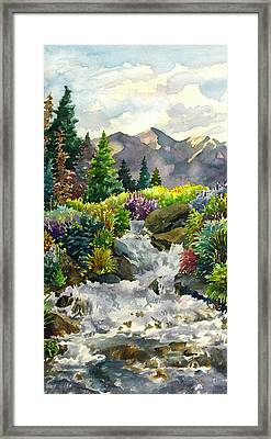 Colorado Waterfall Framed Print by Anne Gifford