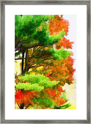 3 Colors Of The Nature 1 Framed Print by Lanjee Chee