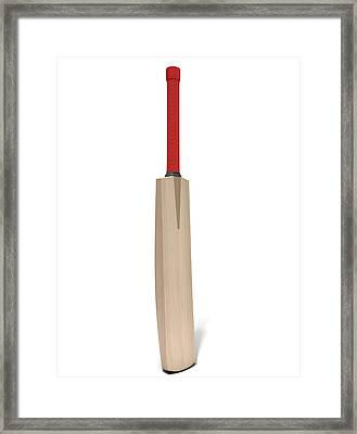 Cricket Bat Framed Print by Allan Swart