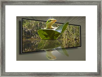 3-d Reflecting Lizard Framed Print by Michael Whitaker
