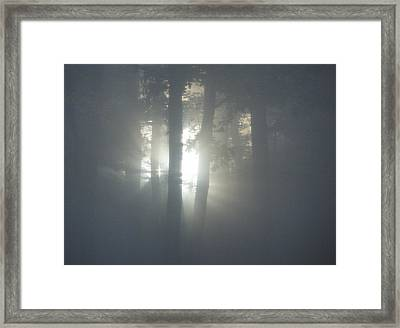Daybreak Of Creation Framed Print by Lila Mattison