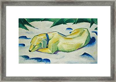 Dog Lying In The Snow Framed Print by Franz Marc