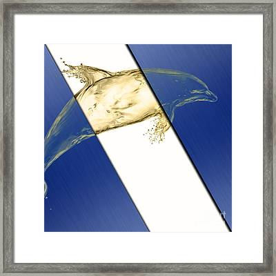 Dolphin Collection Framed Print by Marvin Blaine