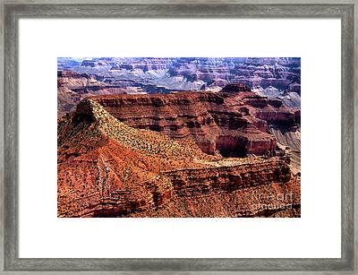 Dragon Corridor Grand Canyon Framed Print by Thomas R Fletcher