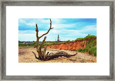 Drift Wood Framed Print by Svetlana Sewell