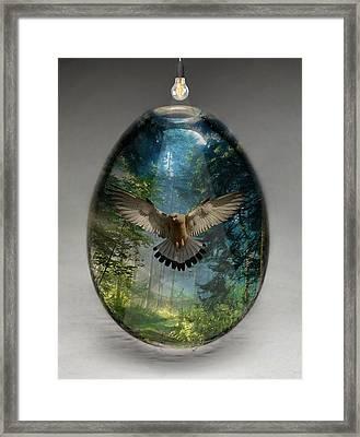 Eagle Art Framed Print
