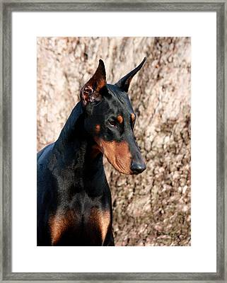 Elegant Framed Print by Rita Kay Adams