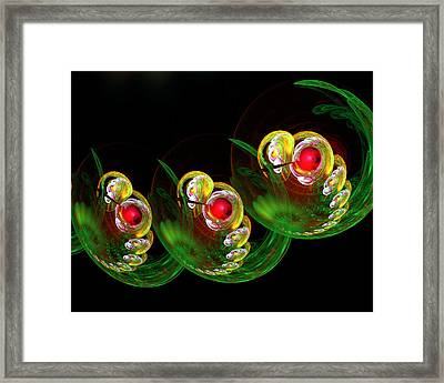 3 Embryos Framed Print