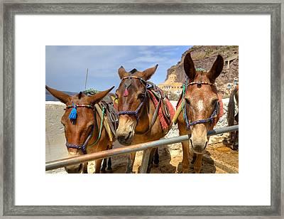 Fira - Santorini Framed Print