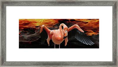 Flame-colored Framed Print