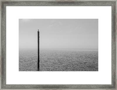 Framed Print featuring the photograph Fog On The Cape Fear River by Willard Killough III