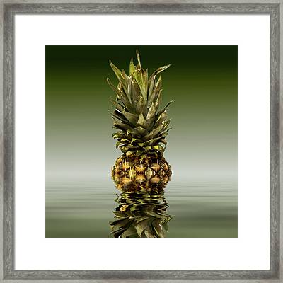 Framed Print featuring the photograph Fresh Ripe Pineapple Fruits by David French