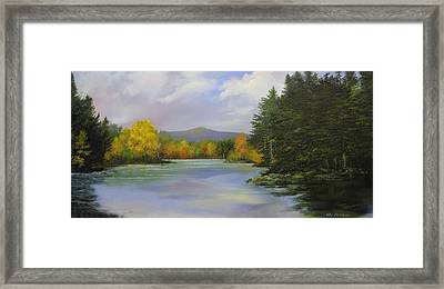 Gale Meadow Pond Framed Print by Ken Ahlering