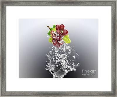 Grape Splash Framed Print