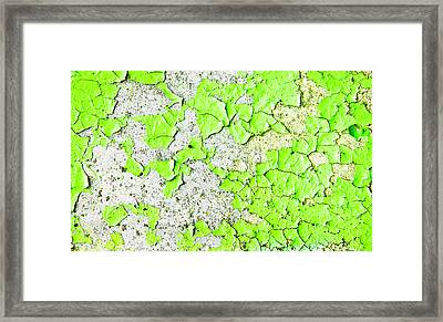 Green Paint Framed Print by Tom Gowanlock
