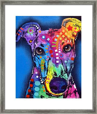 Greyhound Framed Print by Dean Russo