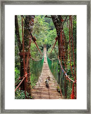 Framed Print featuring the photograph Hanging Bridge by Alexey Stiop