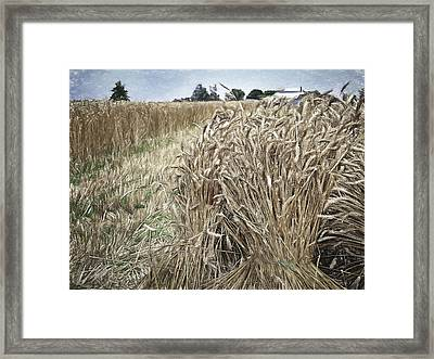 Harvest Time Framed Print by F Leblanc