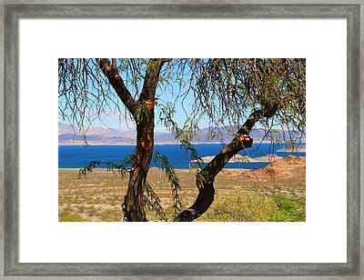 Hoover Dam Visitor Center Framed Print