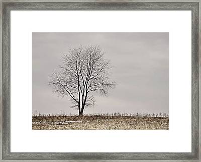 February Horizon   Framed Print by JAMART Photography
