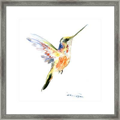 Hummingbird Framed Print by Suren Nersisyan