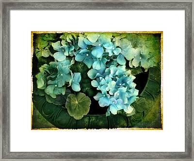 Hydrangea Framed Print by Jessica Jenney