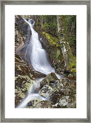 Waternomee Brook Cascades - Kinsman Notch New Hampshire Framed Print by Erin Paul Donovan