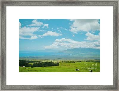 Kula Maui Hawaii Framed Print by Sharon Mau