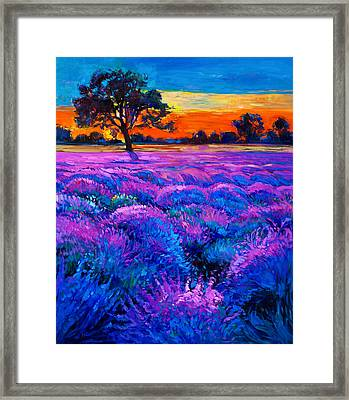 Lavender Framed Print by Boyan Dimitrov