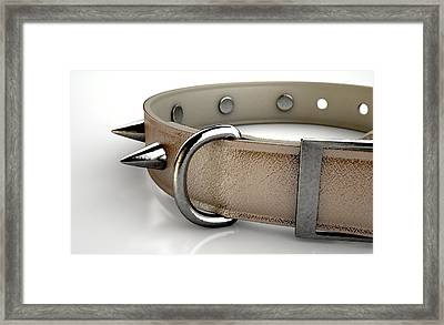 Leather Studded Collar Framed Print
