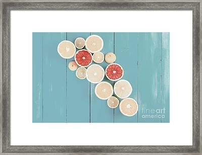 Lemon, Orange, Grapefruit And Lime Citrus Fruit Slices Framed Print by Radu Bercan