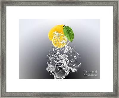 Lemon Splast Framed Print