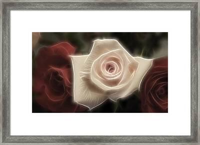 3 Little Roses For Patrice Framed Print