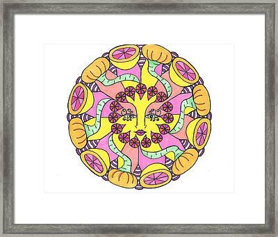 Fruit Face Framed Print