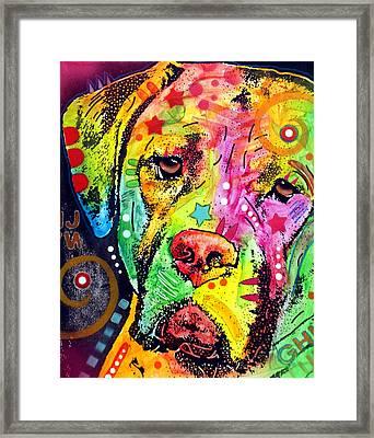 Mastiff Framed Print by Dean Russo